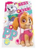 Fleece deka Paw Patrol Best Pups